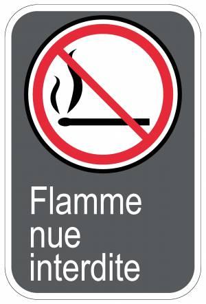 """<a href=""""https://www.signel.ca/product/panneaux-norme-csa-flamme-nue-interdite/"""">Panneaux NORME  CSA : Flamme nue interdite</a>"""