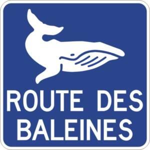 """<a href=""""https://www.signel.ca/product/acheminement-vers-la-route-ou-le-circuit-touristiqueroute-des-baleines/"""">Acheminement vers la route ou le circuit touristique Route des baleines</a>"""